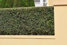 Bayswater North Hard landscaping surfaces 8