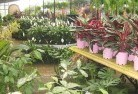 Bayswater North Plant nursery 7